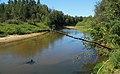 Река Илеть 01.jpg
