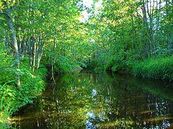 Река Чегла