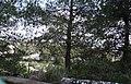 גבעת העמדות ברכס נשר ההיסטורי - תצפית ממזרח על מחצבת נשר הישנה.jpg