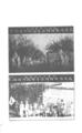 中國紅十字會歷史照片003.png