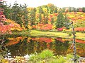 滝見沼(Lake Takimi) - panoramio.jpg