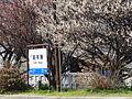 田布施駅.jpg