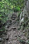 白岩の滝 - panoramio (36).jpg