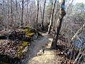 03 Quarry Trail Eno River SP NC 7904 (12483703465).jpg
