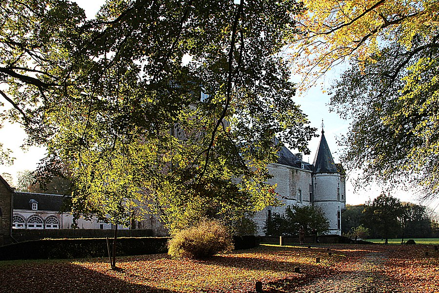 Harlue (Belgium), the castle (XVII-XVIII centuries).