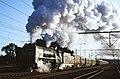 1328 NylstroomSouthAfrica 19920809.jpg