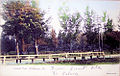 1900 Central Park.jpg