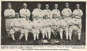 New Orleans Pelicans (baseball)