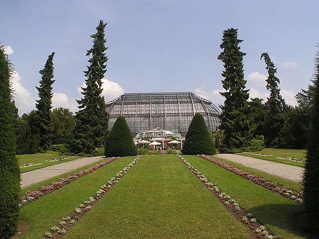 Jardin botanique de Berlin