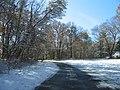 2007 12 06 - PWRC - Loblolly Pine Dr 2.JPG