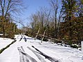 2011-10-30 01-Downed power pole on Hewitt Road in West Amwell, Hunterdon County, New Jersey after 6 to 7 inches of snow fell the previous day during the 2011 Halloween nor'easter.jpg