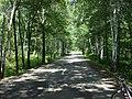 2012年8月6日——骑行在县道040上 - panoramio.jpg