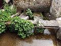 20130606 Mostar 055.jpg