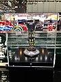 2013 FIA Formula One Constructors Championship Trophy, Geneva 2014 (Ank Kumar) 02.jpg