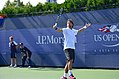 2013 US Open (Tennis) - Fabio Fognini (9664842460).jpg