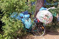 2013 Woodstock 004.jpg