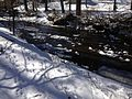 2014-01-24 11 30 30 View across the West Branch Shabakunk Creek.JPG
