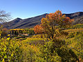 2014-10-04 14 10 55 View of Aspens during autumn leaf coloration and ponds from Charleston-Jarbidge Road (Elko County Route 748) in Copper Basin about 11.3 miles north of Charleston, Nevada.JPG