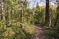 2019 05 Riežupes dabas parks (13).jpg