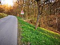 2021-04-23 Radtour bei Brunntal (Werbach) 9.jpg