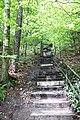 20210518. Sächsische Schweiz.Rauenstein.-023.jpg