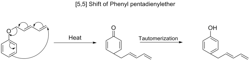 [5,5] shift of phenyl pentadienyl ether