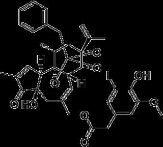Iodoresiniferatoxin Chemical compound