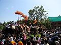 918 Elanjithara Meelam By ManojK.JPG