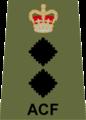 ACF Col.png