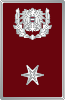 Federal Police Austria Postponement Distinctions 2015 E2b 1.png