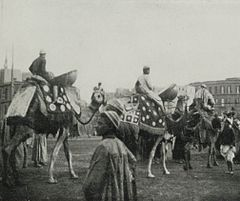 A Camel Band In a Procession Which Has Gone to Meet a Pilgrim Returned from Mecca. (1911) - TIMEA.jpg