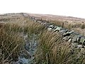 A drystone dyke and electric fence - geograph.org.uk - 634711.jpg