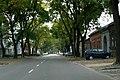 A város útjain közlekedve... - panoramio - Szemes Elek (53).jpg