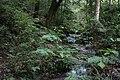 Abril para Cela Cascadas Maravillas.jpg