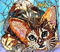 Abyssinian kitten.jpg