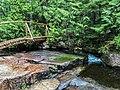Acadia National Park, Maine (4d428215-9f80-40f0-ad77-8a134fe43efe).jpg