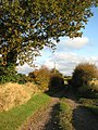 Access road to Wilds Farm - geograph.org.uk - 598360.jpg