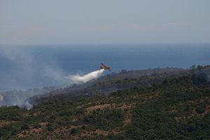 Aerial firefighting in Villeneuve-Loubet (5).jpg
