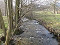 Afon Ceidiog - geograph.org.uk - 375501.jpg