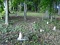 African Episcopal Cemetery 01.JPG