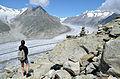 Aletsch Glacier (5994683149).jpg