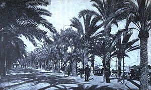 Manuel Senante Martinez - Alicante, 1908