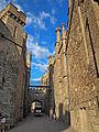 Alupka castle5.jpg
