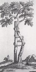Andry tree