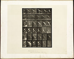 Animal locomotion. Plate 523 (Boston Public Library).jpg
