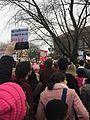 Ann Arbor Women's March IMG 6661.jpg