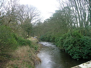 Chapeltoun - The Annick Water looking upstream from Chapeltoun Bridge.