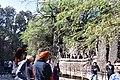 Another very impressive photo point and selfie spot in Nek Chand's Rock Garden (44223713282).jpg