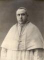 António Manuel Pereira Ribeiro.png