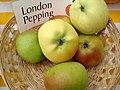 Apfelgalerie London-Pepping.jpg